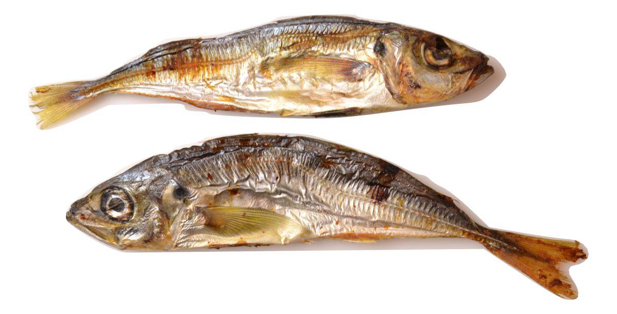 horse mackerel 5 x 160g