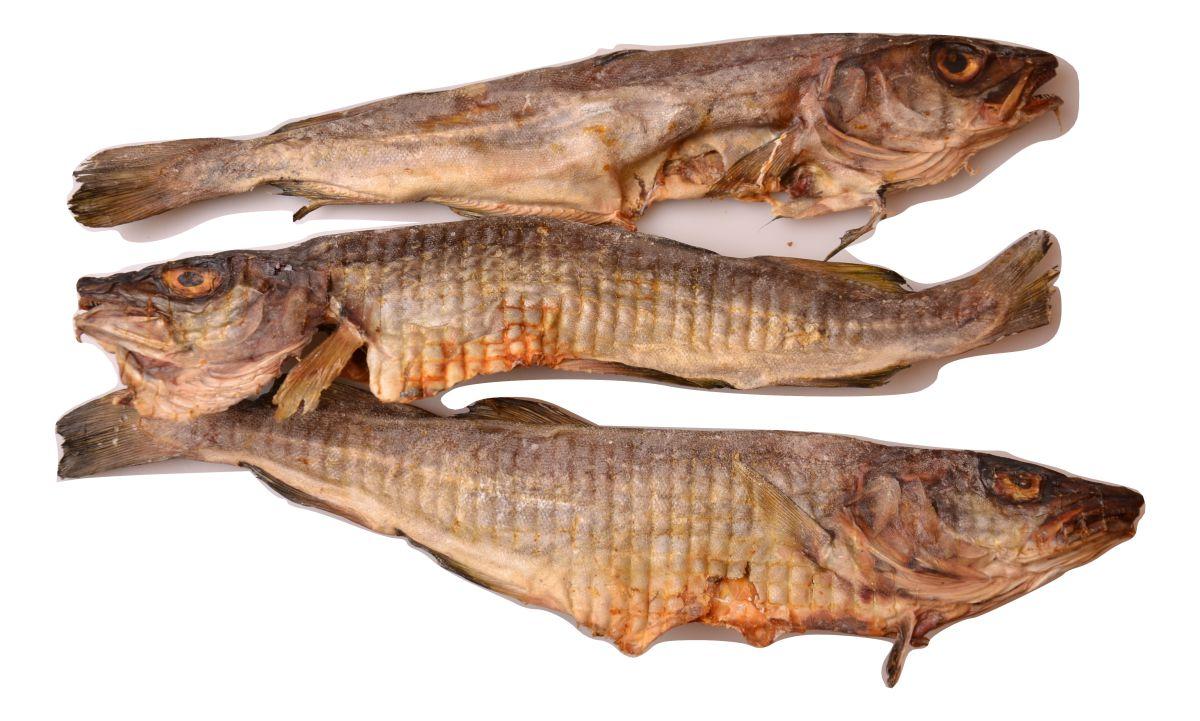 poisson sch 5 x 230g