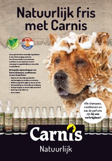 poster carnis shampoo 70 x 100 cm grote hond 1 stuk
