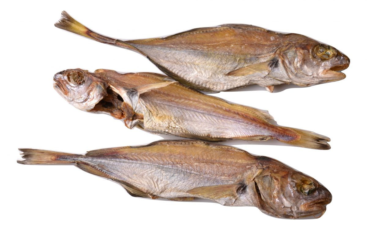 whiting 5 x ca 200 gr